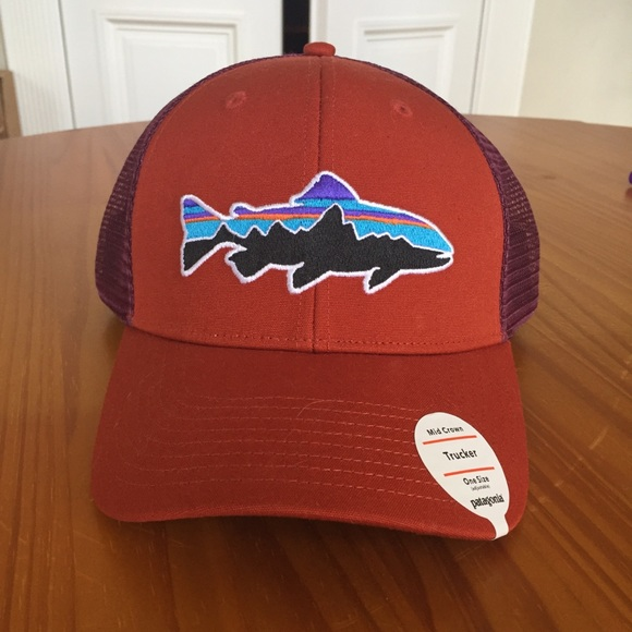 326f77d52 Patagonia Fitz Roy Trout Trucker Hat cap NWT NWT